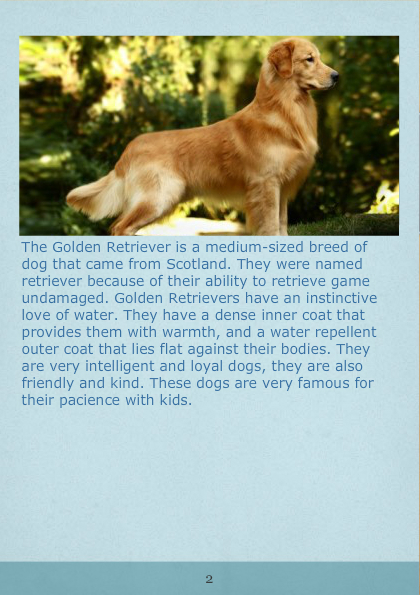 Dogs 411