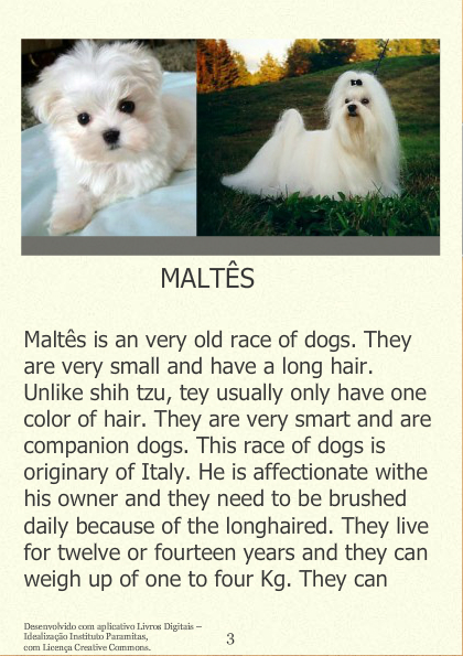 The cutests dogs