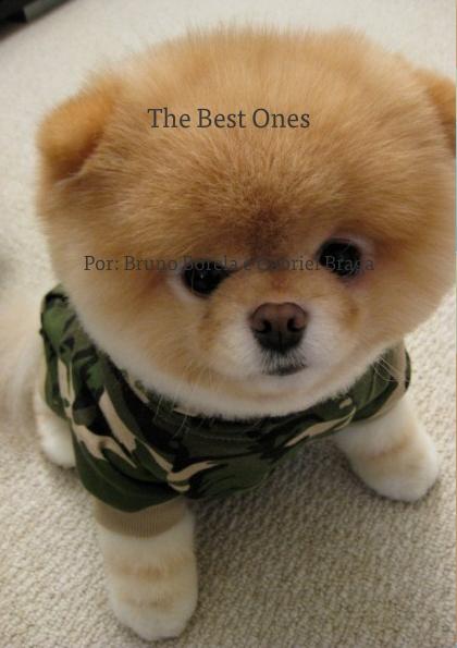 The Best Ones